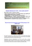 BEL - Boletim Eletrônico Nº 307